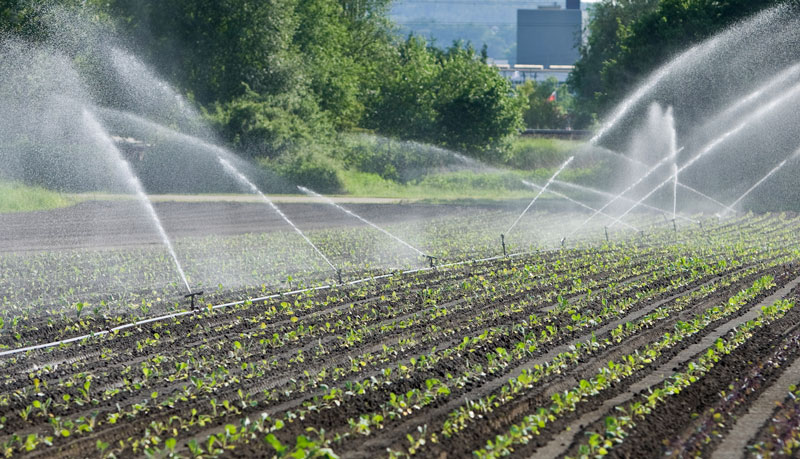 Benefits of Wade Rain Handmove Irrigation & Wade Rain